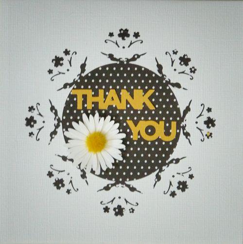 Thankyou_921