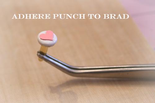 Brad 1