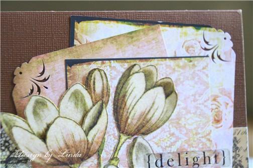 K-delight-2