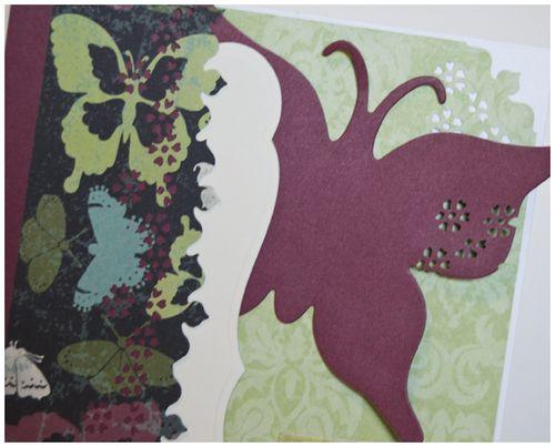 Butterfly wings card detail