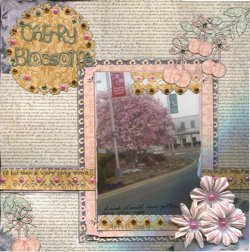 Cherry Blossoms R1