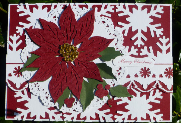 Card Poinsettia and snowflakes